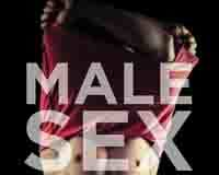 Male Sex Work book cover