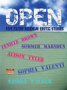 "Cover of the book ""Open: Five Bisexual Stories"""