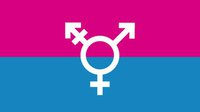 Trans flag