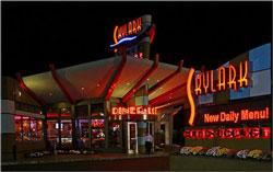 Skylark Diner in Edison, NJ at night