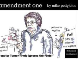Amendment One cartoon by Mike Pettyjohn February 2018