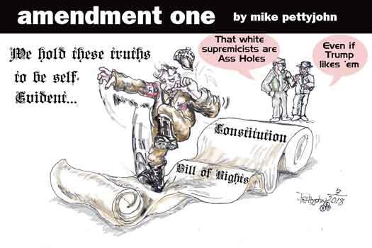 Amendment One editorial cartoon August 2018