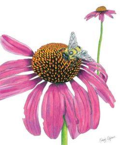 """Flower"" artwork by Kinsey Ratzman"