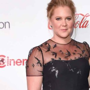 Amy Schumer comments on 2017