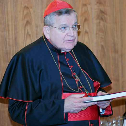 Cardinal Raymond Burke book launch file photo