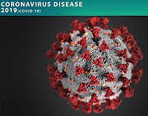 Coronavirus under a microscope