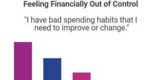 Experian LGBT 2018 Survey of financial planning struggles
