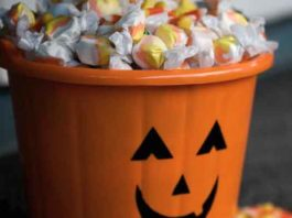 Halloween candy and pumpkin