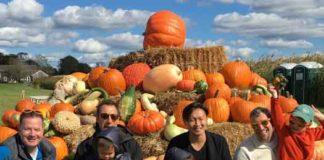 LGBT Network fall pumpkins 2017