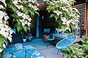 Backyard seating at The yard at Thanh Nguyen and Gavin Quynh's home. Photos by Johnny Walsh
