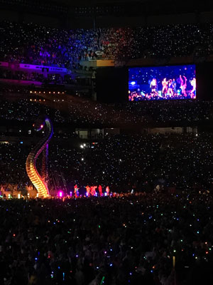 Taylor Swift concert at MetLife stadium photo by Will Loschiavo