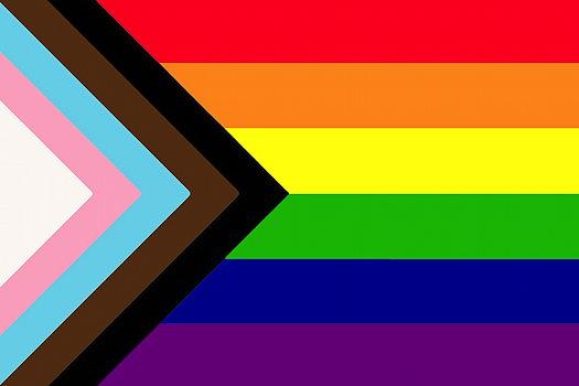 LGBTQ Town Hall - Rainbow & Trans flag