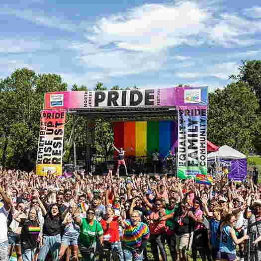 Pride Picnic photo of the stage with hundreds of people waving to the camera